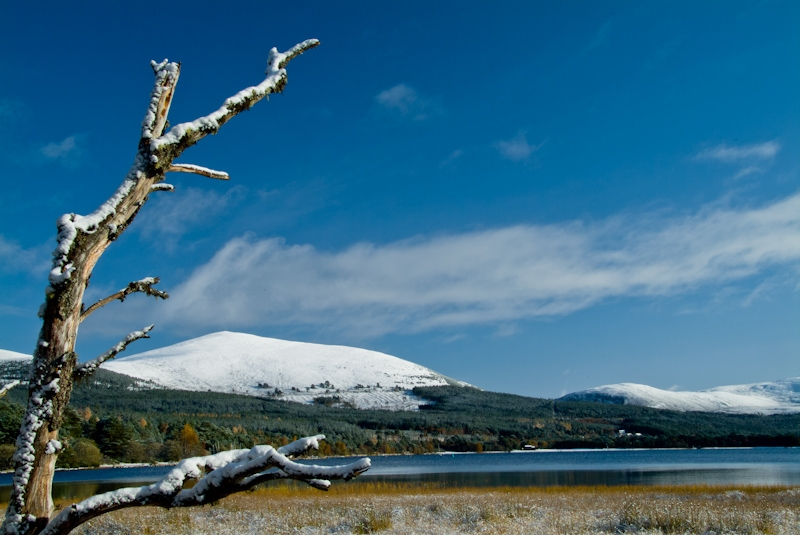 Loch Morlich in winter