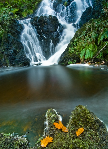Waterfall at Wood of Cree, Dumfries and Galloway