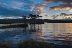 Loch Assynt sunset