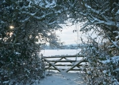 Winter scene, Cotswolds